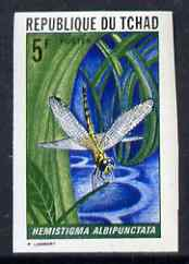 Chad 1972 Insects 5f (Hemistigma albipunctata) imperf from limited printing unmounted mint as SG 362*