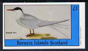 Bernera 1982 Sea Birds #02 (Roseate Tern) imperf souvenir sheet (�1 value) unmounted mint