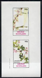 Grunay 1982 Flowers #03 (Calycanthus & Lasiopetalum) unmounted mint imperf set of 2 (40p & 60p)