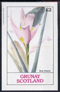 Grunay 1982 Flowers #03 (Musa) unmounted mint imperf deluxe sheet (�2 value)