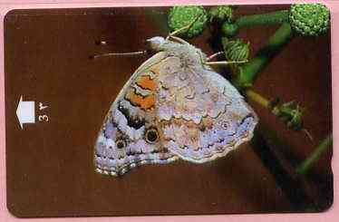 Telephone Card -Oman 3r phone card showing Blue Pansy #2 Butterfly