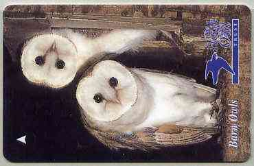 Telephone Card - Jersey �2 phone card showing Barn Owls (The Hawk & Owl Trust)
