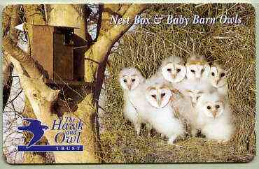 Telephone Card - Jersey �2 phone card showing Nest Box & Baby Barn Owls (The Hawk & Owl Trust)