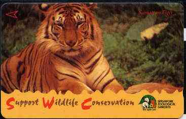 Telephone Card - Singapore $10 phone card showing Sumatran Tiger (Wildlife Conservation Series)