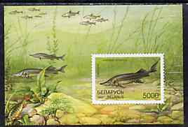 Belarus 1997 Fishes unmounted mint imperf m/sheet SG MS 250