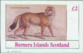 Bernera 1982 Wild Dogs (Falklands Aguara Dog) imperf deluxe sheet (�2 value) unmounted mint