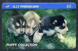 Telephone Card - DIT 'Puppy Collection' �2 phone card showing three puppies