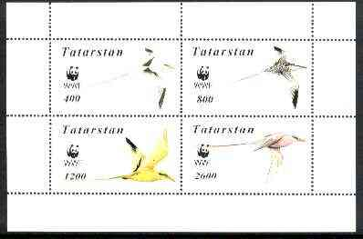 Tatarstan Republic 1998 WWF - Birds perf sheetlet containing complete set of 4 values unmounted mint