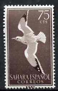 Spanish Sahara 1959 Herring Gull 75c from Bird set, SG 159 unmounted mint