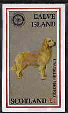 Calve Island 1998 Rotary Int opt in silver on 1984 Rotary - Dogs imperf souvenir sheet (�1 value) unmounted mint