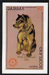 Gairsay 1998 Rotary Int opt in gold on 1984 Rotary -Dogs (Huskie) imperf deluxe sheet (�2 value) unmounted mint
