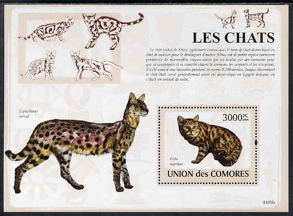 Comoro Islands 2009 Domestic Cats perf m/sheet unmounted mint