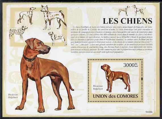 Comoro Islands 2009 Dogs perf m/sheet unmounted mint