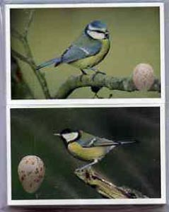 Trade Cards - Birds & their Eggs by Emerald, the complete set of 72 in full colour and pristine, originally sold for \A319.95