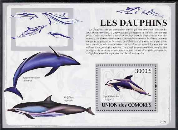 Comoro Islands 2009 Dolphins perf m/sheet unmounted mint