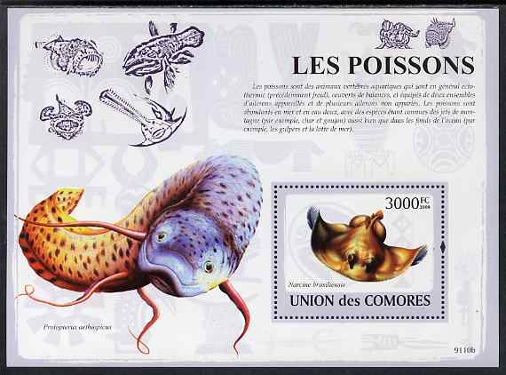 Comoro Islands 2009 Fish perf m/sheet unmounted mint