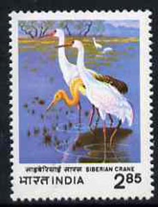 India 1998 Siberian Crane unmounted mint