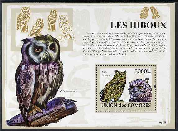 Comoro Islands 2009 Owls perf m/sheet unmounted mint