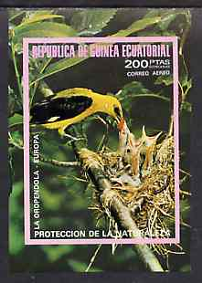Equatorial Guinea 1976 European Birds imperf m/sheet unmounted mint Mi BL 237, stamps on birds