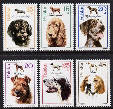 Poland 1989 Hunting Dogs set of 6 (SG 3209-14) unmounted mint