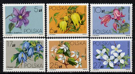 Poland 1984 Clematis set of 6 unmounted mint (SG 2921-26)