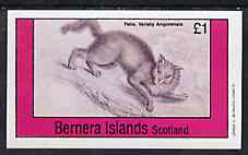 Bernera 1982 Cats (Felis angorensis) imperf souvenir sheet (�1 value) unmounted mint