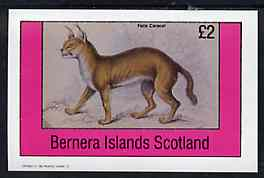 Bernera 1982 Cats (Felis caracal) imperf deluxe sheet (�2 value) unmounted mint