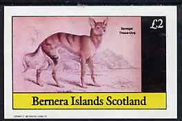 Bernera 1982 Wild Dog (Senegal Thous Dog) imperf deluxe sheet (�2 value) unmounted mint