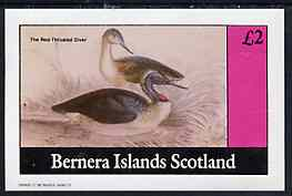 Bernera 1982 Water Birds (Great Throated Diver) imperf  deluxe sheet (�2 value) unmounted mint