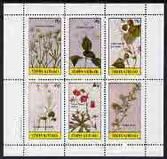 Staffa 1982 Flowers #19 (Nailwort, Collinson's Flower, Blue Bell, etc) perf set of 6 values (15p to 75p) unmounted mint