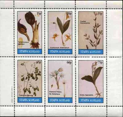 Staffa 1982 Flowers #21 (Cigar Flower, Orchid, Anemone, etc) perf set of 6 values (15p to 75p) unmounted mint