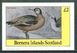 Staffa 1982 Grey Phalarope imperf deluxe sheet (�2 value) unmounted mint