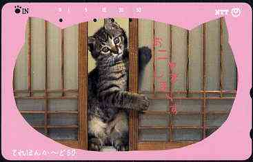 Telephone Card - Japan 50 units phone card showing Kitten between bamboo screen (card dated 1.5.1992)