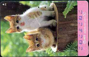 Telephone Card - Japan 50 units phone card showing two Kittens sitting on Tree Trunk (card dated 1.6.1990)