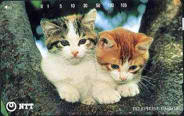 Telephone Card - Japan 105 units phone card showing two Kittens up a tree (card 111-070)