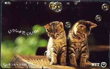 Telephone Card - Japan 105 units phone card showing two Kittens with bubbles (card 111-036)