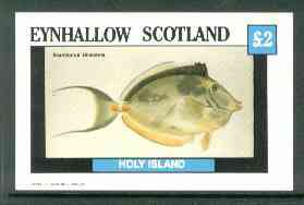 Eynhallow 1982 Fish #07 (Acanthurus unicornis) imperf deluxe sheet (�2 value) unmounted mint, stamps on fish, stamps on unicorns