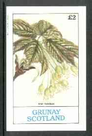 Grunay 1982 Flowers #05 (Acer hybridum) imperf deluxe sheet (�2 value) unmounted mint