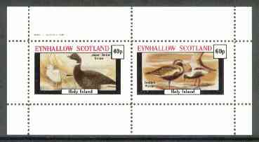 Eynhallow 1982 Shorebirds (Snipe & Plover) perf set of 2 values unmounted mint