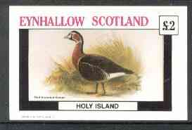 Eynhallow 1982 Red Breasted Goose imperf deluxe sheet (�2 value) unmounted mint