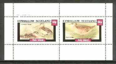 Eynhallow 1982 Marshbirds (Snipe & Crake) perf set of 2 values unmounted mint