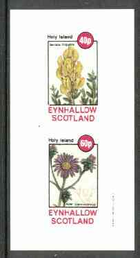 Eynhallow 1982 Flowers #12 (Genista & Aster) imperf set of 2 values unmounted mint