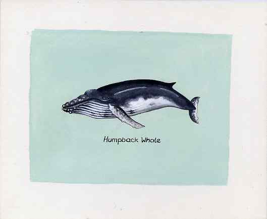 Bernera 1981 Marine Animals (Humpback Whale) original artwork by Sharon File of the B L Kearley Studio, watercolour on board 105 x 80 mm plus issued perf sheetlet incorpo...