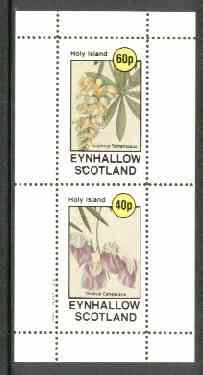 Eynhallow 1982 Flowers #13 (Lupin & Sweet Pea) perf set of 2 values unmounted mint
