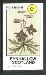 Eynhallow 1982 Flowers #13 (Delphinium) imperf souvenir sheet (�1 value) unmounted mint