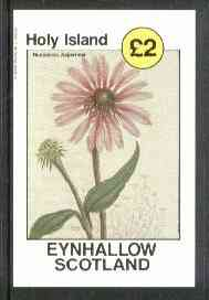 Eynhallow 1982 Flowers #13 (Rudbeckia asperrima) imperf deluxe sheet (�2 value) unmounted mint