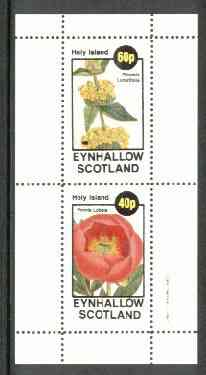 Eynhallow 1982 Flowers #15 (Phlomis & Peonia) perf set of 2 values unmounted mint, stamps on flowers