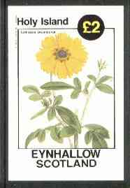 Eynhallow 1982 Flowers #15 (Calliopsis drummondii) imperf deluxe sheet (�2 value) unmounted mint