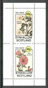 Eynhallow 1982 Flowers #17 (Potentilla & Malva) perf set of 2 values unmounted mint