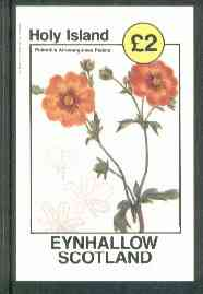Eynhallow 1982 Flowers #17 (Potentilla atrosanguines pedata) imperf deluxe sheet (�2 value) unmounted mint